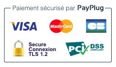 Xpayplug blog badge payplug png pagespeed ic 6qseyll7dc