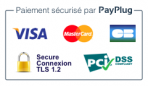 Xpayplug blog badge payplug png pagespeed ic 6qseyll7dc 1